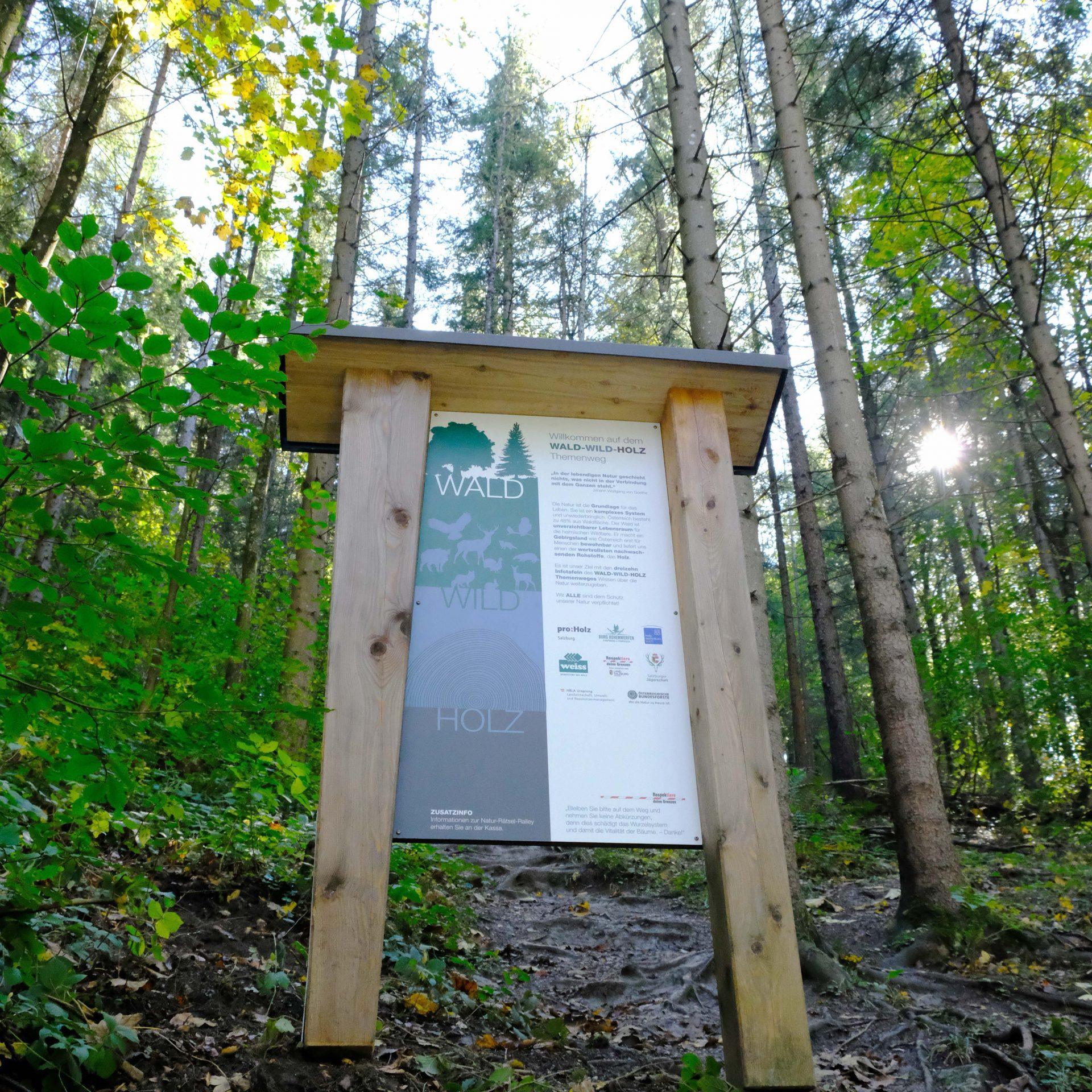 Wald-Wild-Holz Lehrpfad
